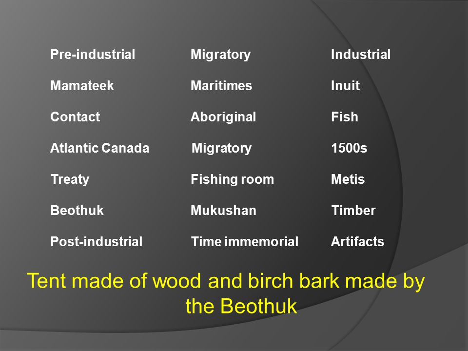 Tent made of wood and birch bark made by the Beothuk Pre-industrial Migratory Industrial Mamateek MaritimesInuit ContactAboriginal Fish Atlantic Canada Migratory 1500s TreatyFishing roomMetis BeothukMukushanTimber Post-industrialTime immemorialArtifacts