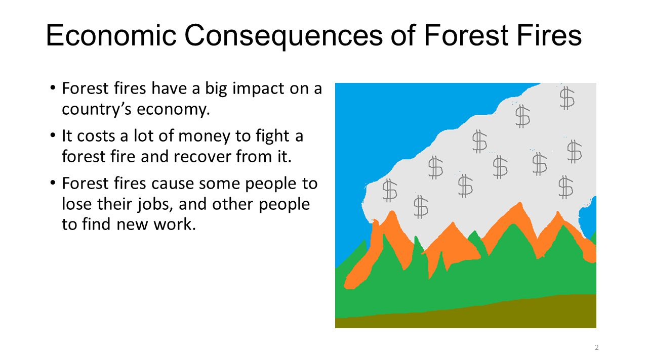 Economic Consequences of Forest Fires Forest fires have a big impact on a country's economy.