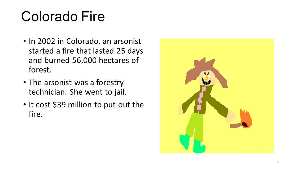 Colorado Fire In 2002 in Colorado, an arsonist started a fire that lasted 25 days and burned 56,000 hectares of forest.