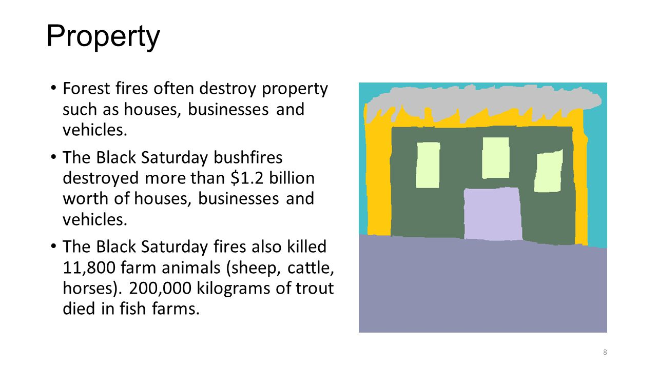 Property Forest fires often destroy property such as houses, businesses and vehicles.
