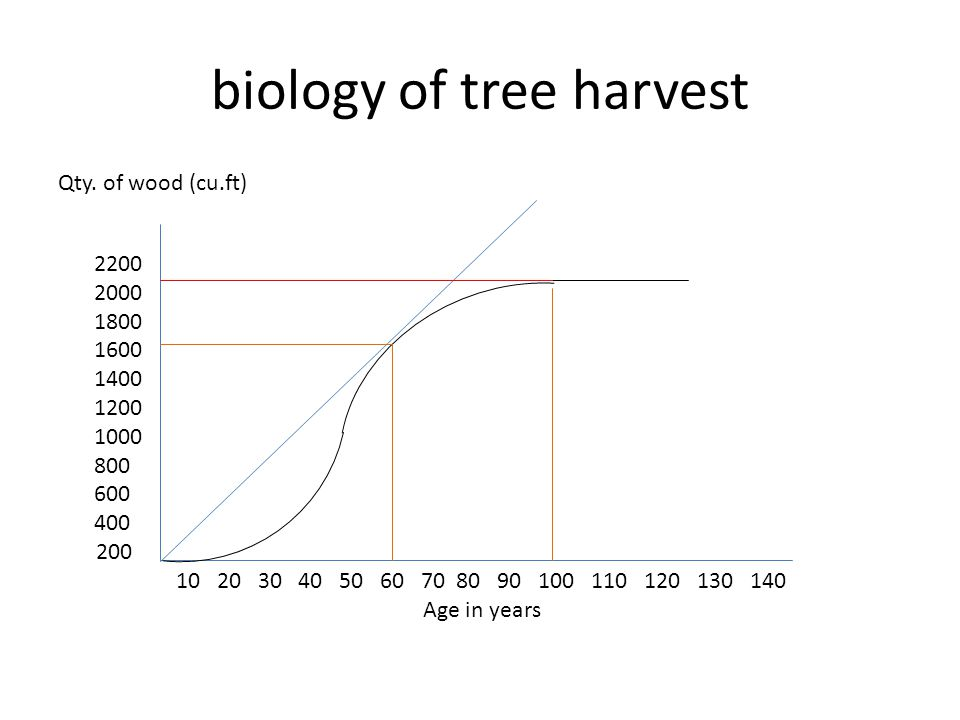 biology of tree harvest Qty. of wood (cu.ft) 2200 2000 1800 1600 1400 1200 1000 800 600 400 200 10 20 30 40 50 60 70 80 90 100 110 120 130 140 Age in