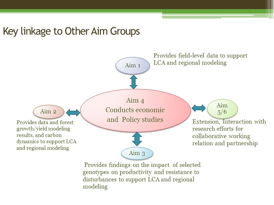 Key linkage to Other Aim Groups Aim 4 Conducts economic and Policy studies Aim 1 Aim 5/6 Aim 3 Aim 2 Provides field-level data to support LCA and regional modeling Provides data and forest growth/yield modeling results, and carbon dynamics to support LCA and regional modeling Provides findings on the impact of selected genotypes on productivity and resistance to disturbances to support LCA and regional modeling Extension, Interaction with research efforts for collaborative working relation and partnership