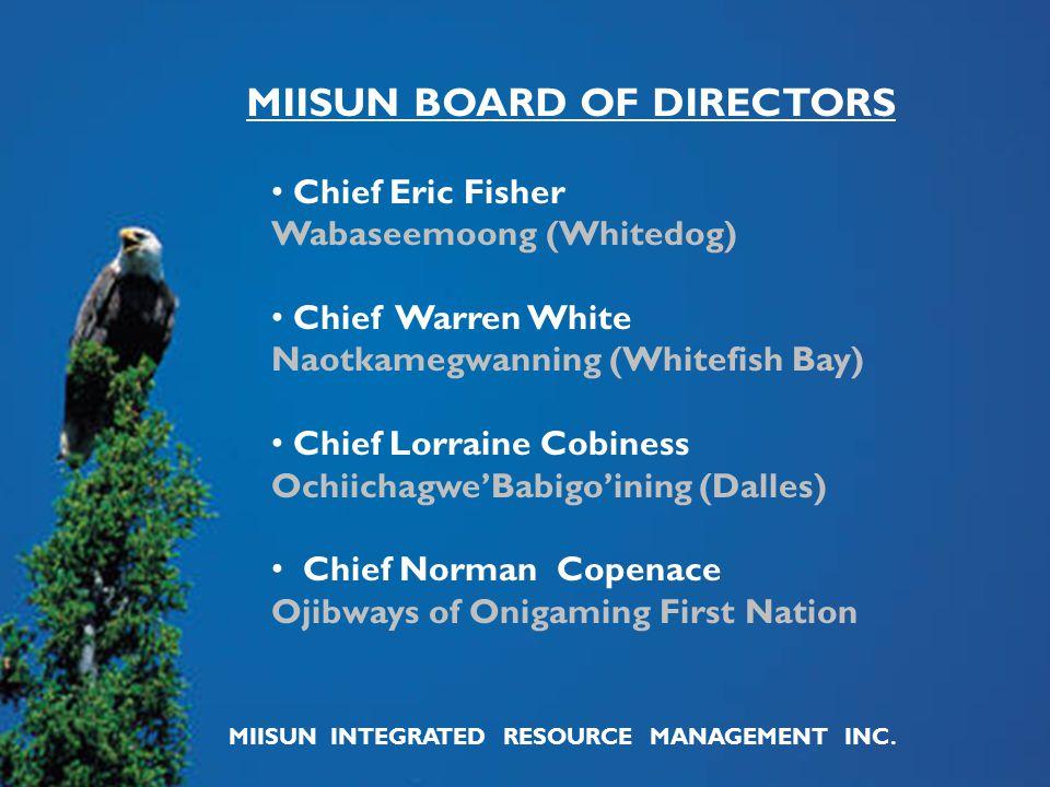Chief Eric Fisher Wabaseemoong (Whitedog) Chief Warren White Naotkamegwanning (Whitefish Bay) Chief Lorraine Cobiness Ochiichagwe'Babigo'ining (Dalles