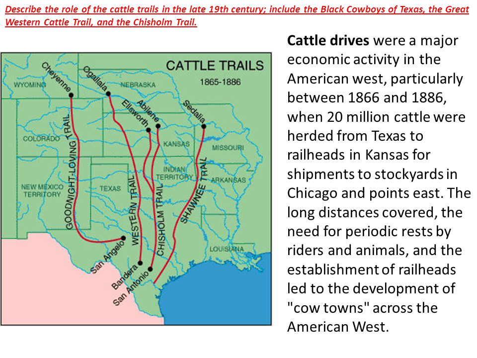 Describe the role of the cattle trails in the late 19th century; include the Black Cowboys of Texas, the Great Western Cattle Trail, and the Chisholm