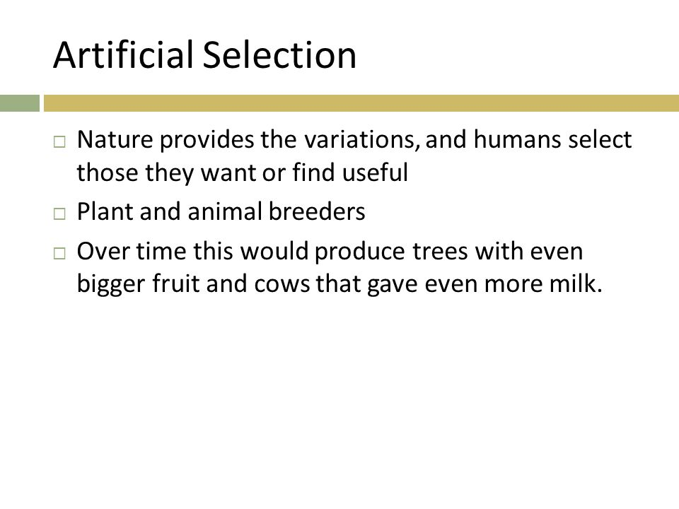 Artificial Selection  Nature provides the variations, and humans select those they want or find useful  Plant and animal breeders  Over time this would produce trees with even bigger fruit and cows that gave even more milk.