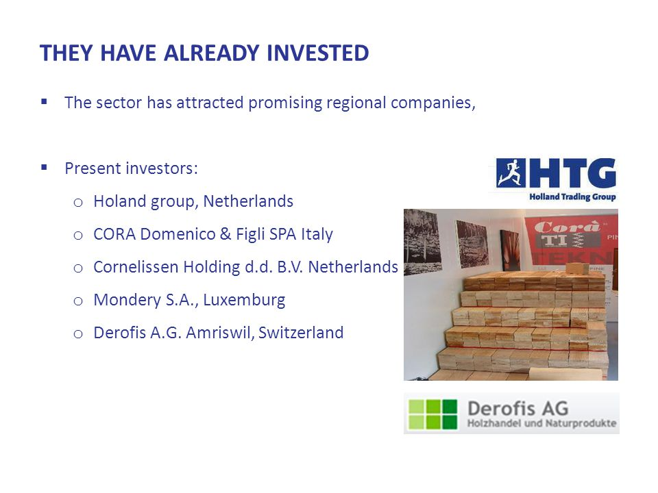 THEY HAVE ALREADY INVESTED  The sector has attracted promising regional companies,  Present investors: o Holand group, Netherlands o CORA Domenico & Figli SPA Italy o Cornelissen Holding d.d.