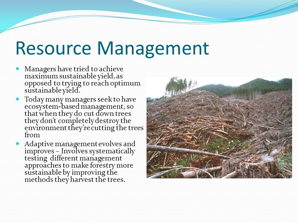 Resource Management Managers have tried to achieve maximum sustainable yield, as opposed to trying to reach optimum sustainable yield. Today many mana