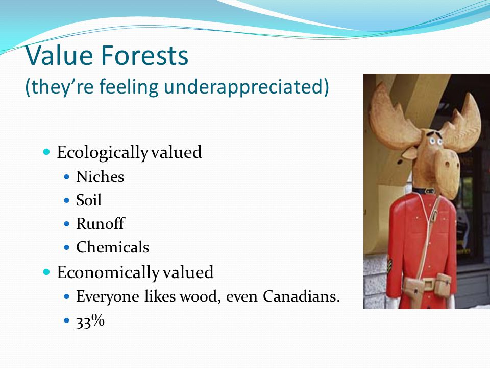 Value Forests (they're feeling underappreciated) Ecologically valued Niches Soil Runoff Chemicals Economically valued Everyone likes wood, even Canadi