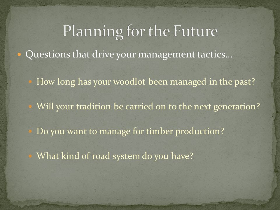 Questions that drive your management tactics… How long has your woodlot been managed in the past.