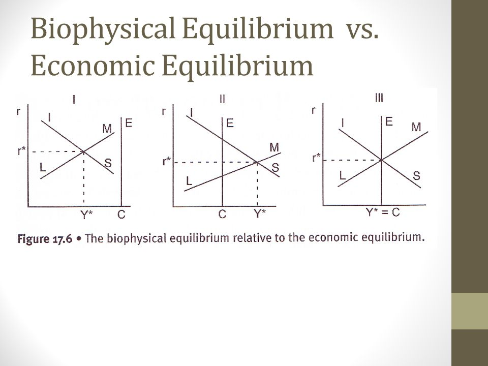 Biophysical Equilibrium vs. Economic Equilibrium