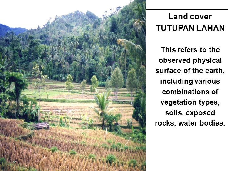 6 PENGGUNAAN LAHAN This refers to the purpose to which land is committed, including the production of goods (such as crops, timber and manufactures) and services (such as defence, recreation, biodiversity and natural resources protection).