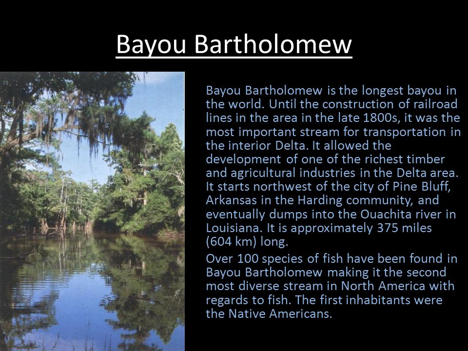 Bayou Bartholomew Bayou Bartholomew is the longest bayou in the world.