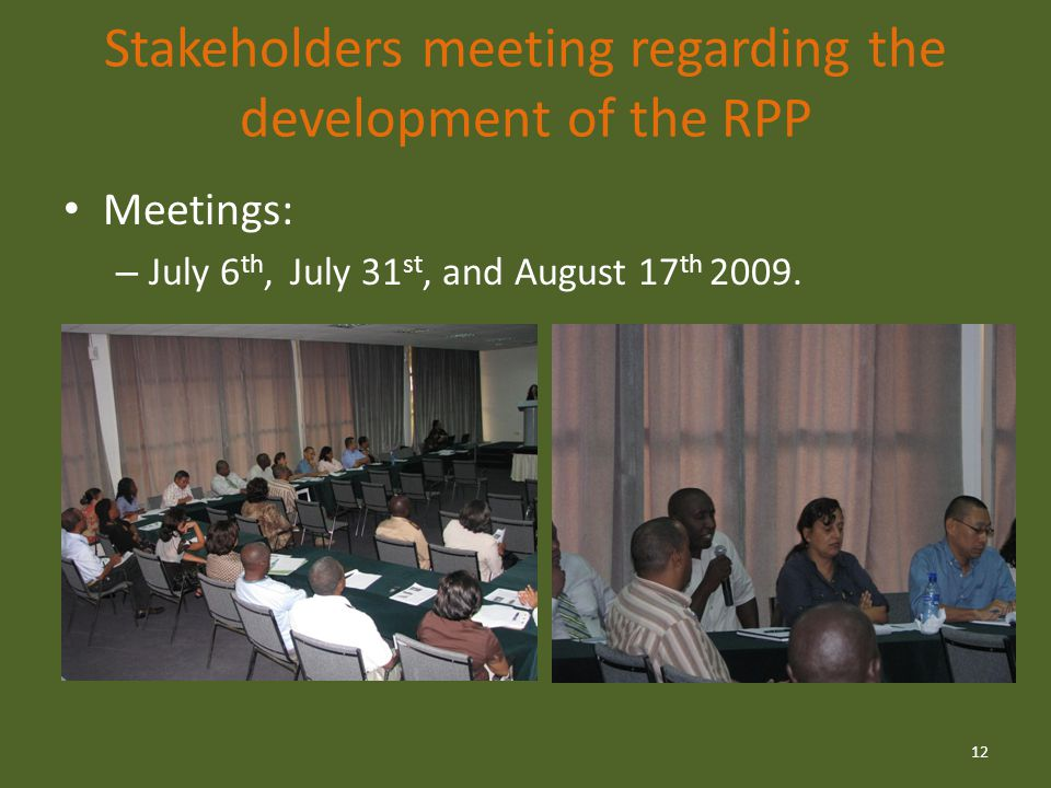 Stakeholders meeting regarding the development of the RPP Meetings: – July 6 th, July 31 st, and August 17 th 2009.