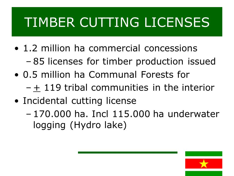 ANNUAL TIMBER PRODUCTION
