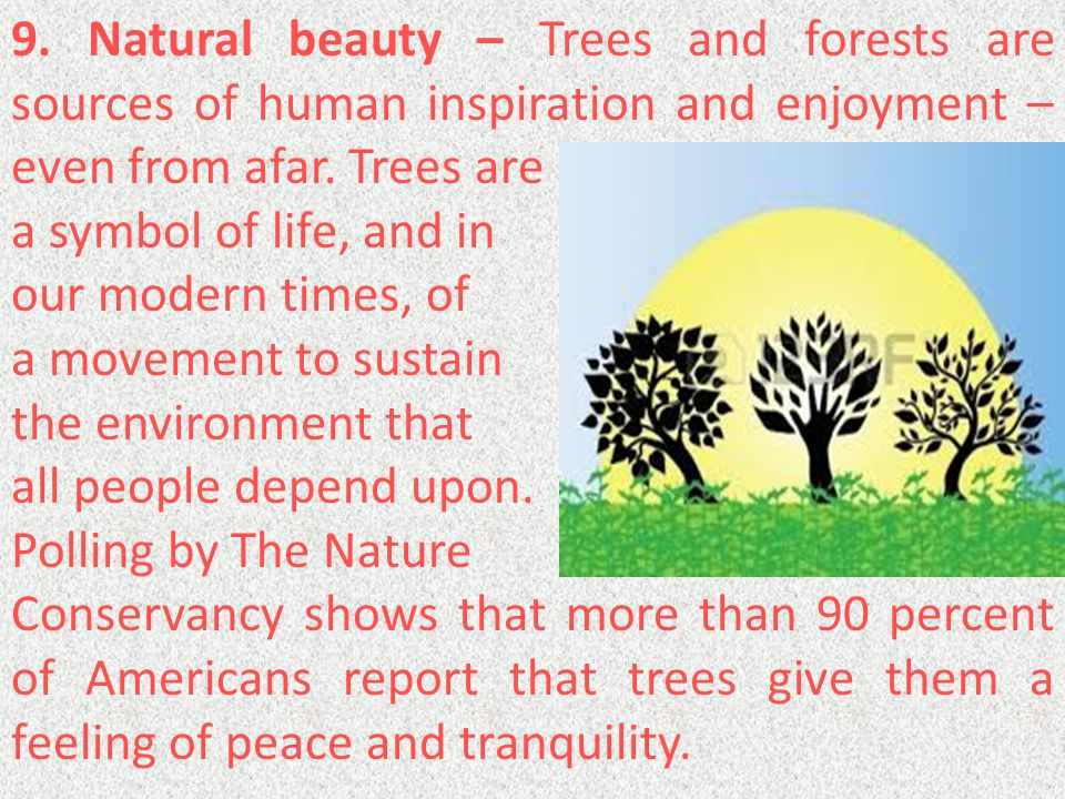 9. Natural beauty – Trees and forests are sources of human inspiration and enjoyment – even from afar. Trees are a symbol of life, and in our modern t
