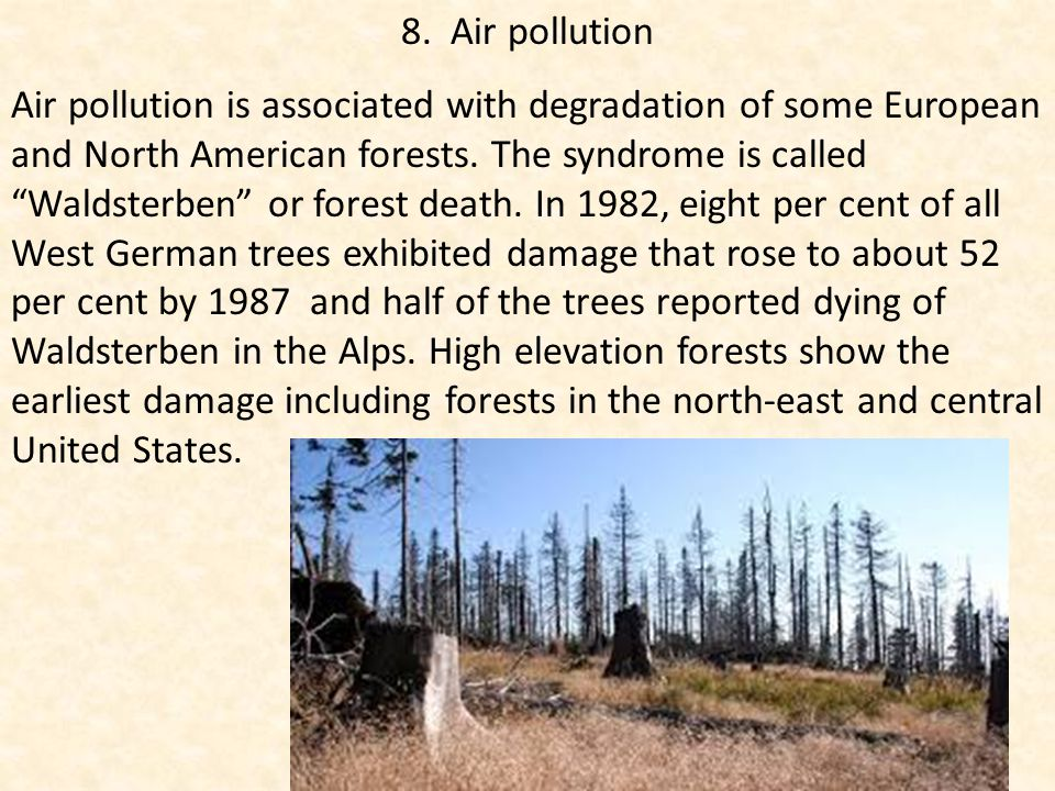 """8. Air pollution Air pollution is associated with degradation of some European and North American forests. The syndrome is called """"Waldsterben"""" or for"""