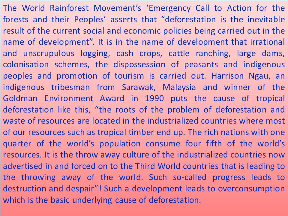 """The World Rainforest Movement's 'Emergency Call to Action for the forests and their Peoples' asserts that """"deforestation is the inevitable result of t"""