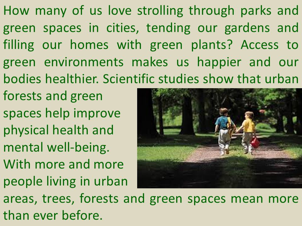 A.BENEFITS OF FORESTS 1.