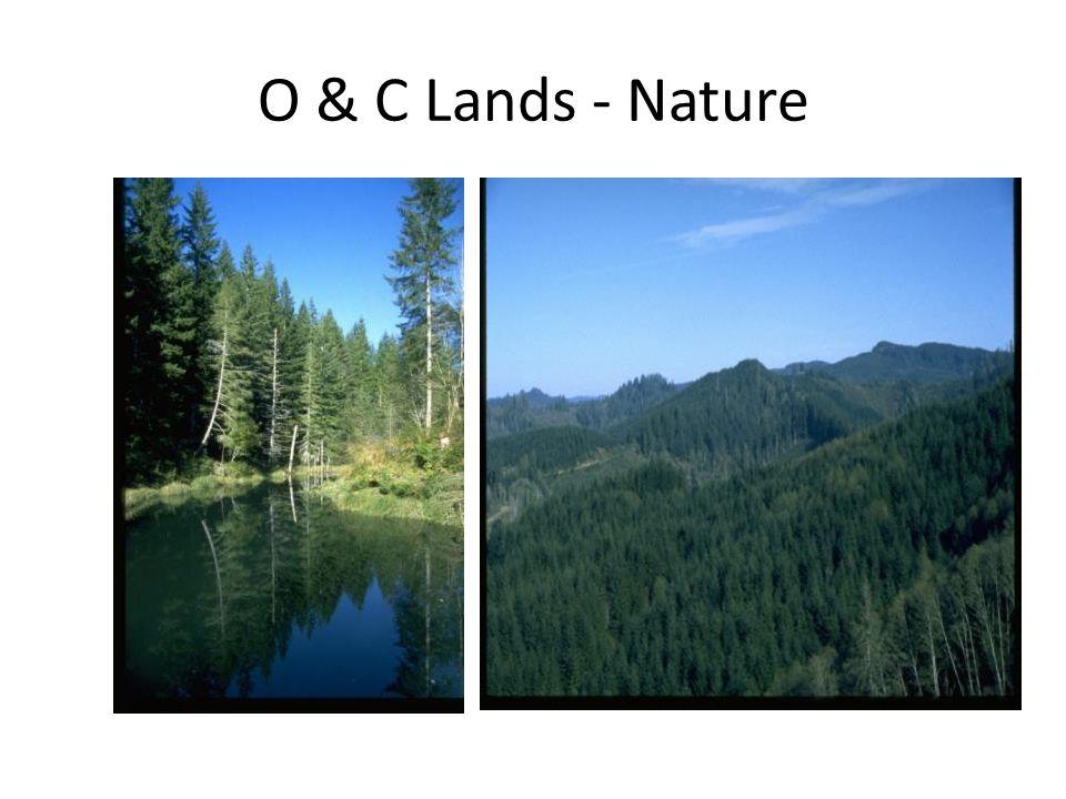 O & C Lands - Nature