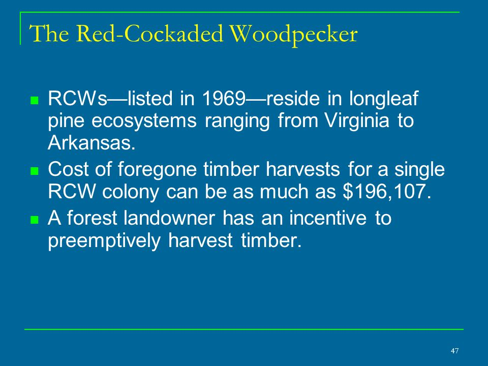 47 The Red-Cockaded Woodpecker RCWs—listed in 1969—reside in longleaf pine ecosystems ranging from Virginia to Arkansas.
