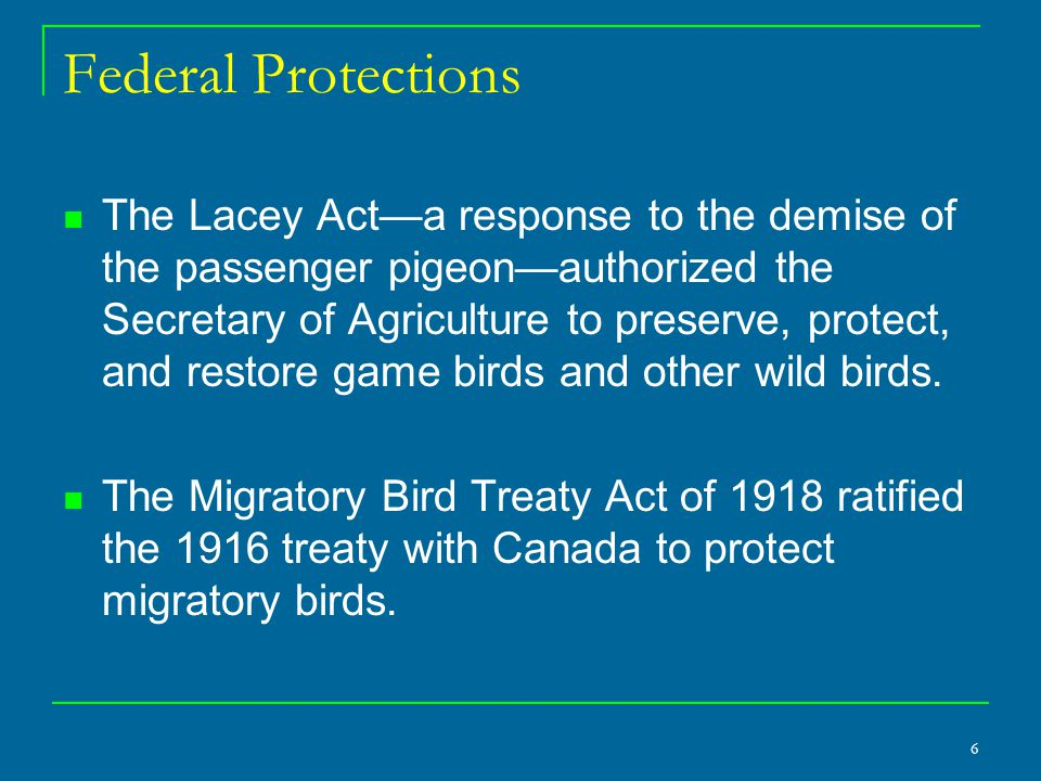 6 Federal Protections The Lacey Act—a response to the demise of the passenger pigeon—authorized the Secretary of Agriculture to preserve, protect, and