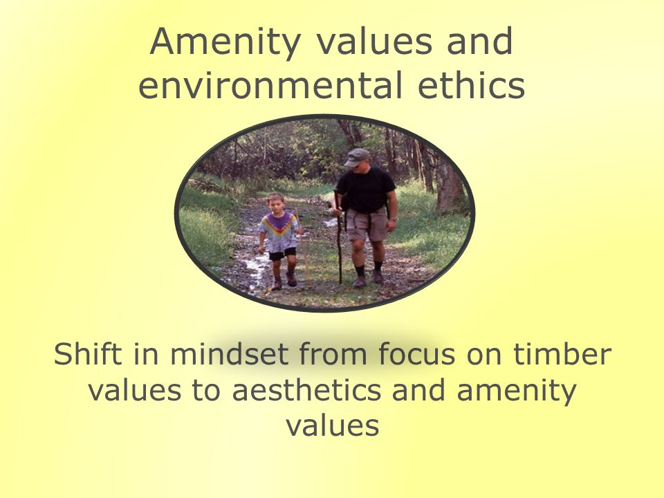 Amenity values and environmental ethics Shift in mindset from focus on timber values to aesthetics and amenity values