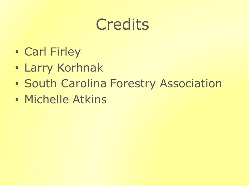 Credits Carl Firley Larry Korhnak South Carolina Forestry Association Michelle Atkins