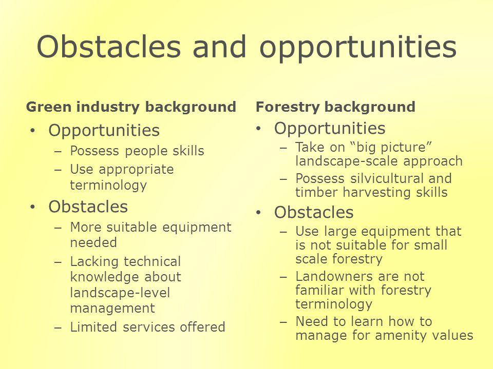 Obstacles and opportunities Green industry background Opportunities – Possess people skills – Use appropriate terminology Obstacles – More suitable equipment needed – Lacking technical knowledge about landscape-level management – Limited services offered Forestry background Opportunities – Take on big picture landscape-scale approach – Possess silvicultural and timber harvesting skills Obstacles – Use large equipment that is not suitable for small scale forestry – Landowners are not familiar with forestry terminology – Need to learn how to manage for amenity values