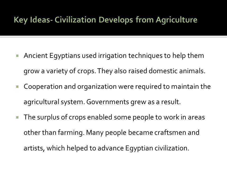  Ancient Egyptians used irrigation techniques to help them grow a variety of crops. They also raised domestic animals.  Cooperation and organization