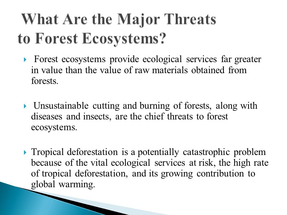  Forest ecosystems provide ecological services far greater in value than the value of raw materials obtained from forests.