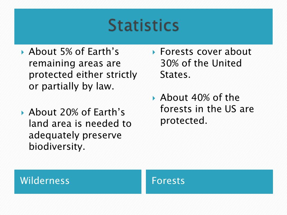 WildernessForests  About 5% of Earth's remaining areas are protected either strictly or partially by law.