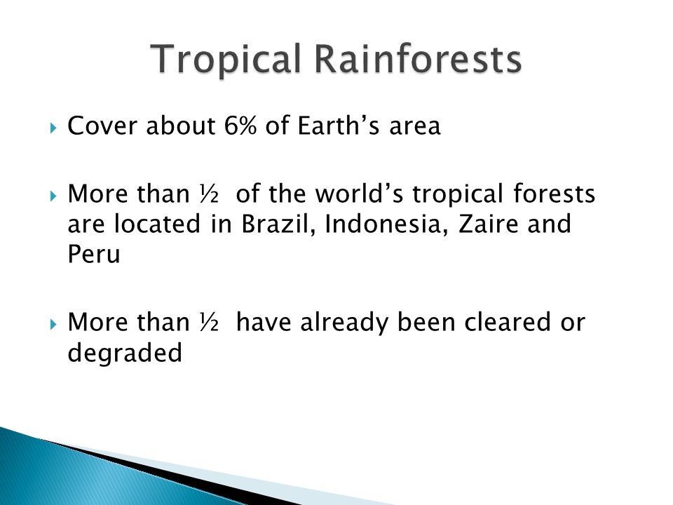  Cover about 6% of Earth's area  More than ½ of the world's tropical forests are located in Brazil, Indonesia, Zaire and Peru  More than ½ have already been cleared or degraded