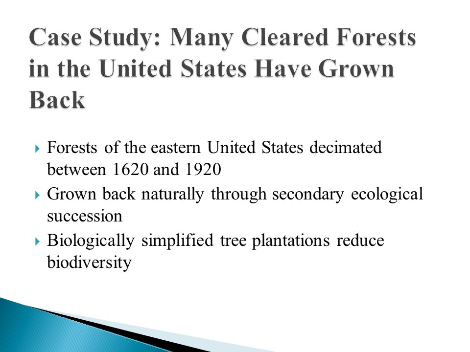  Forests of the eastern United States decimated between 1620 and 1920  Grown back naturally through secondary ecological succession  Biologically simplified tree plantations reduce biodiversity