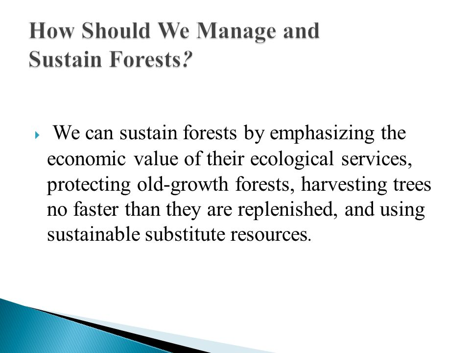 We can sustain forests by emphasizing the economic value of their ecological services, protecting old-growth forests, harvesting trees no faster than they are replenished, and using sustainable substitute resources.