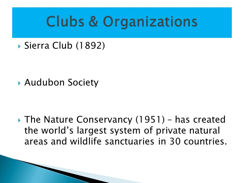  Sierra Club (1892)  Audubon Society  The Nature Conservancy (1951) – has created the world's largest system of private natural areas and wildlife sanctuaries in 30 countries.