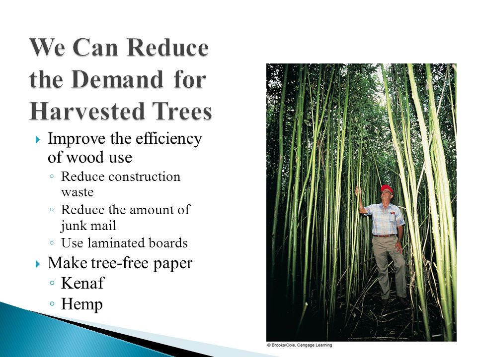  Improve the efficiency of wood use ◦ Reduce construction waste ◦ Reduce the amount of junk mail ◦ Use laminated boards  Make tree-free paper ◦ Kenaf ◦ Hemp
