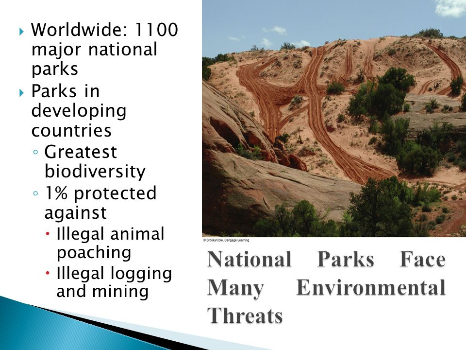 Worldwide: 1100 major national parks  Parks in developing countries ◦ Greatest biodiversity ◦ 1% protected against  Illegal animal poaching  Illegal logging and mining