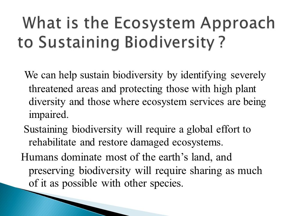 We can help sustain biodiversity by identifying severely threatened areas and protecting those with high plant diversity and those where ecosystem services are being impaired.