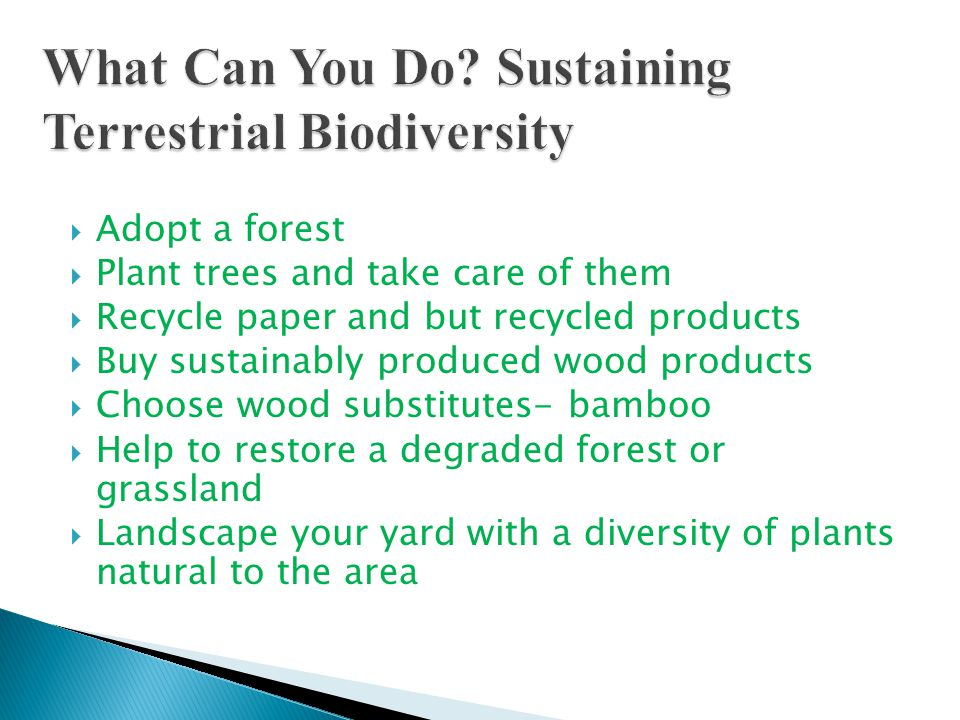  Adopt a forest  Plant trees and take care of them  Recycle paper and but recycled products  Buy sustainably produced wood products  Choose wood substitutes- bamboo  Help to restore a degraded forest or grassland  Landscape your yard with a diversity of plants natural to the area