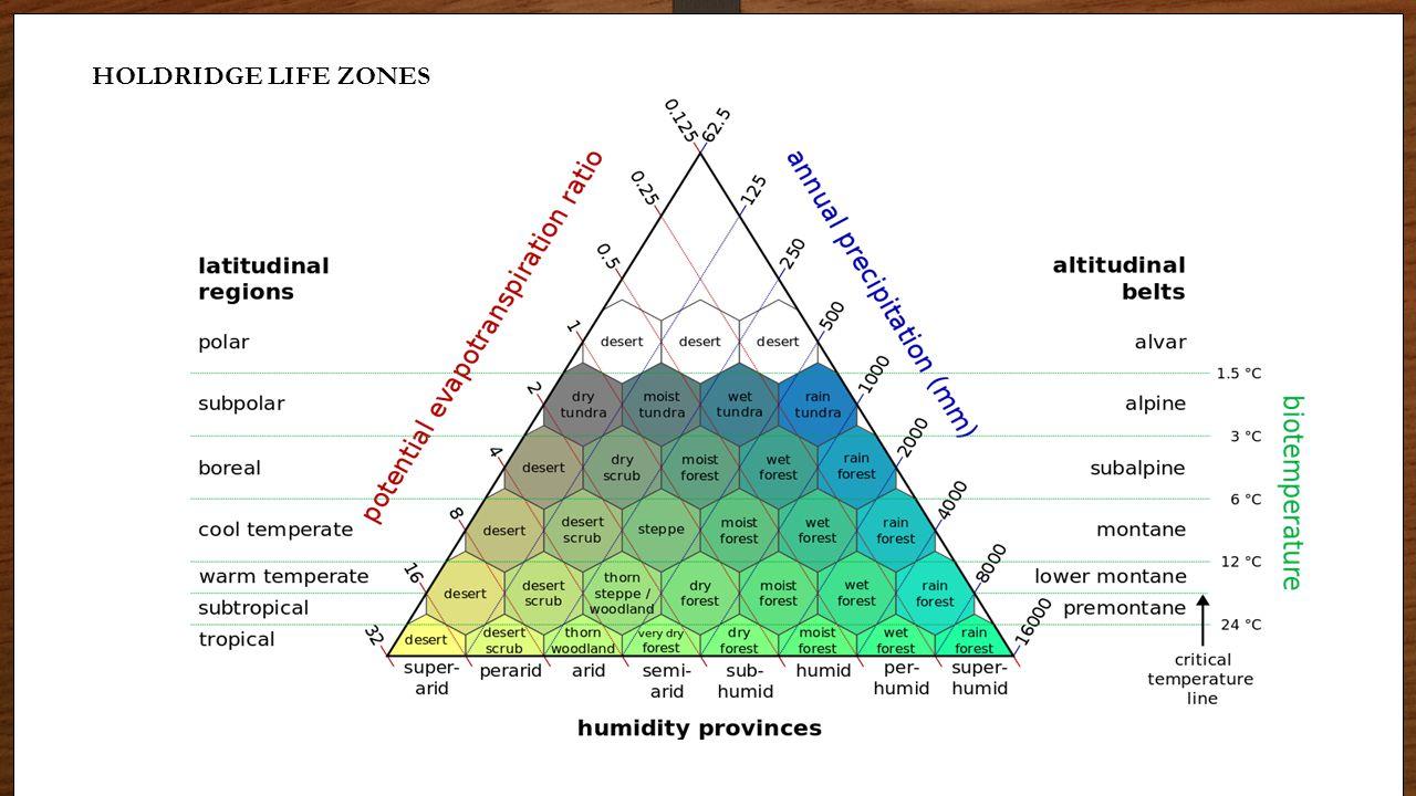 Biome Graphs HOLDRIDGE LIFE ZONES