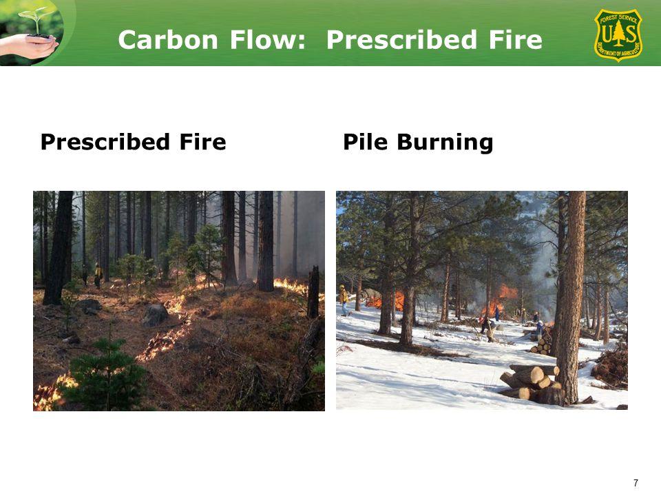Carbon Flow: Prescribed Fire Prescribed FirePile Burning 7