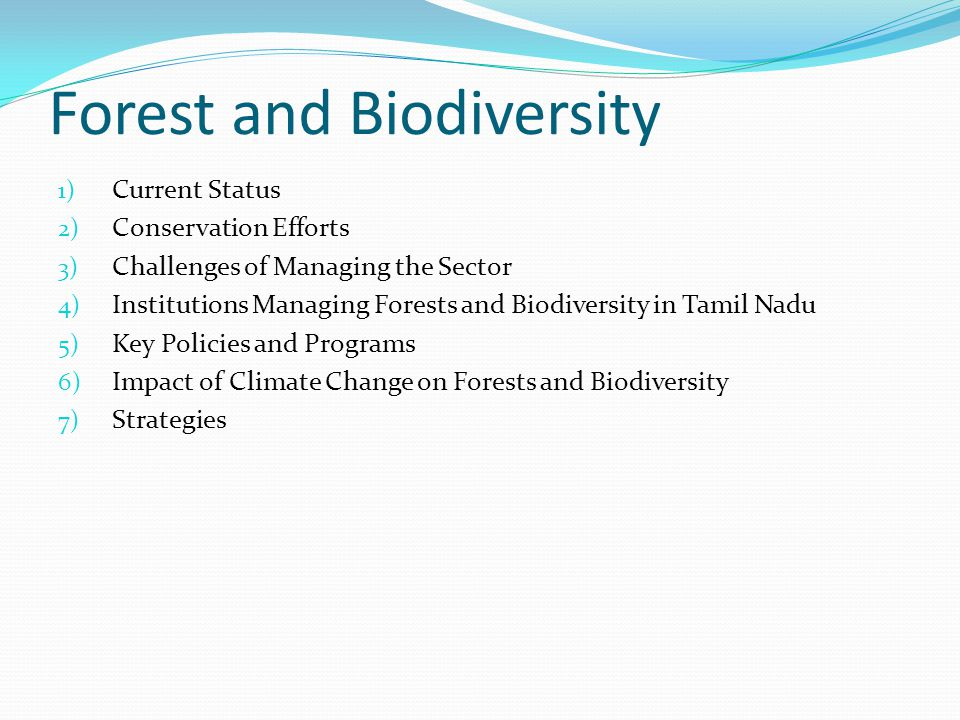 Forest and Biodiversity 1) Current Status 2) Conservation Efforts 3) Challenges of Managing the Sector 4) Institutions Managing Forests and Biodiversity in Tamil Nadu 5) Key Policies and Programs 6) Impact of Climate Change on Forests and Biodiversity 7) Strategies