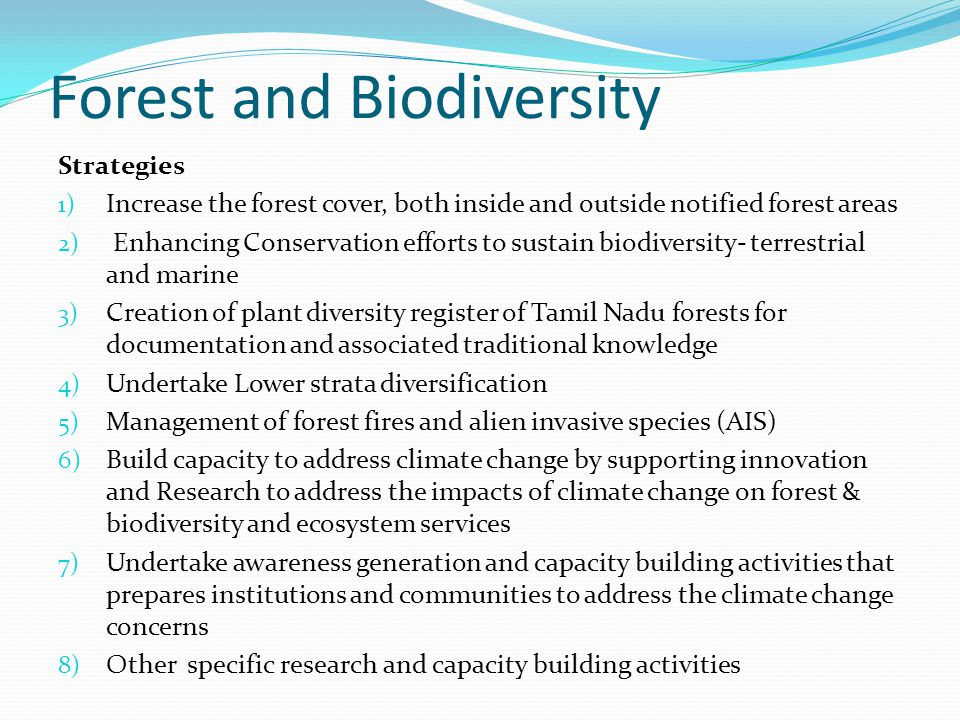 Forest and Biodiversity Strategies 1) Increase the forest cover, both inside and outside notified forest areas 2) Enhancing Conservation efforts to sustain biodiversity- terrestrial and marine 3) Creation of plant diversity register of Tamil Nadu forests for documentation and associated traditional knowledge 4) Undertake Lower strata diversification 5) Management of forest fires and alien invasive species (AIS) 6) Build capacity to address climate change by supporting innovation and Research to address the impacts of climate change on forest & biodiversity and ecosystem services 7) Undertake awareness generation and capacity building activities that prepares institutions and communities to address the climate change concerns 8) Other specific research and capacity building activities