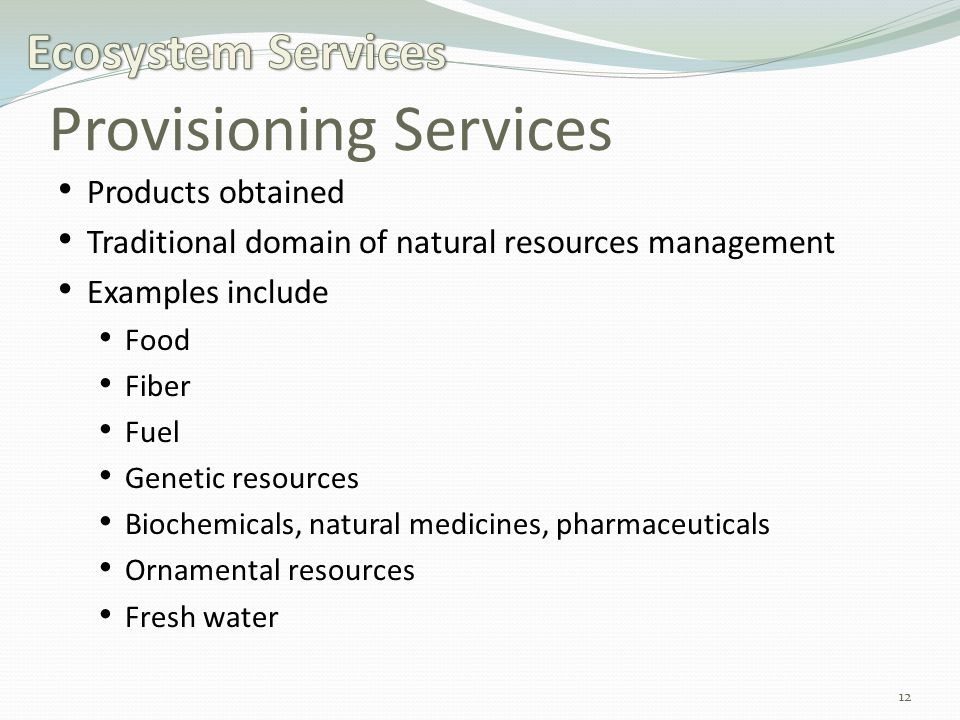 Provisioning Services Products obtained Traditional domain of natural resources management Examples include Food Fiber Fuel Genetic resources Biochemicals, natural medicines, pharmaceuticals Ornamental resources Fresh water 12