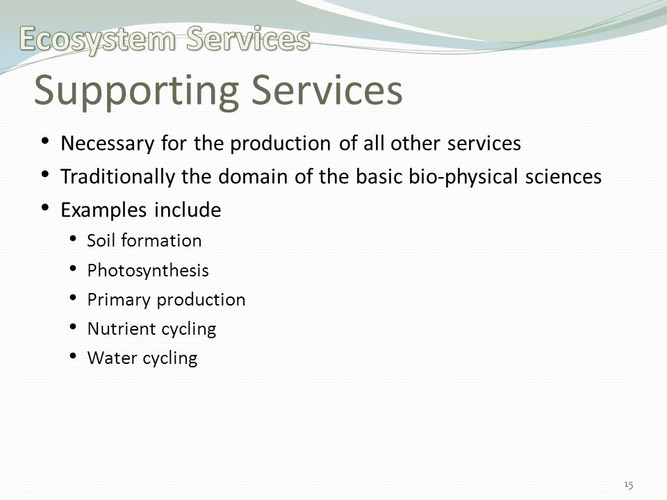 Supporting Services Necessary for the production of all other services Traditionally the domain of the basic bio-physical sciences Examples include Soil formation Photosynthesis Primary production Nutrient cycling Water cycling 15
