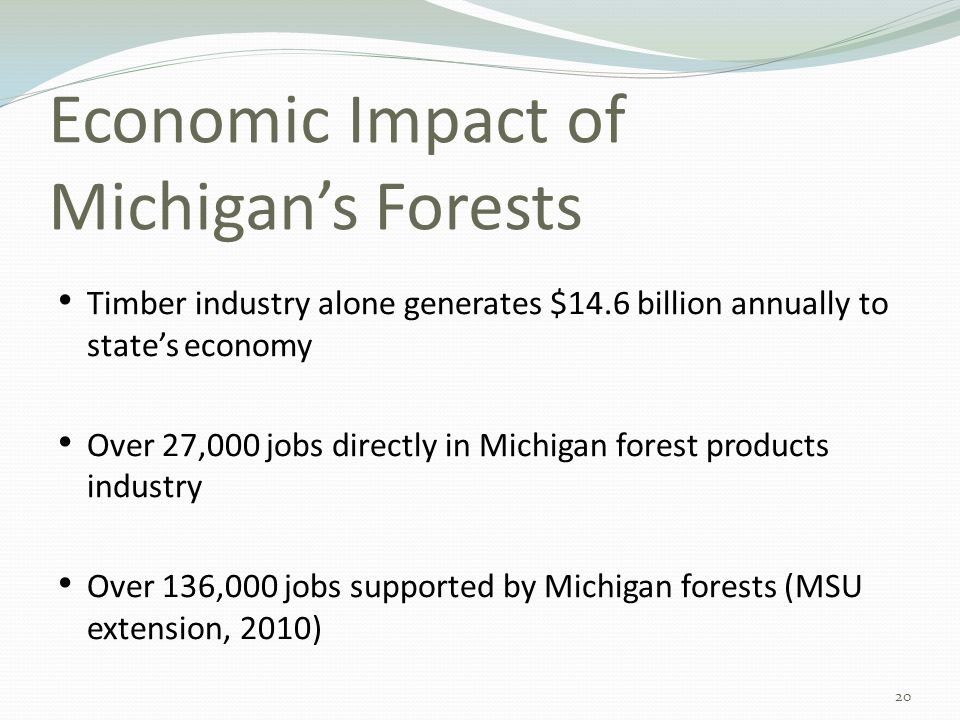 Economic Impact of Michigan's Forests Timber industry alone generates $14.6 billion annually to state's economy Over 27,000 jobs directly in Michigan forest products industry Over 136,000 jobs supported by Michigan forests (MSU extension, 2010) 20