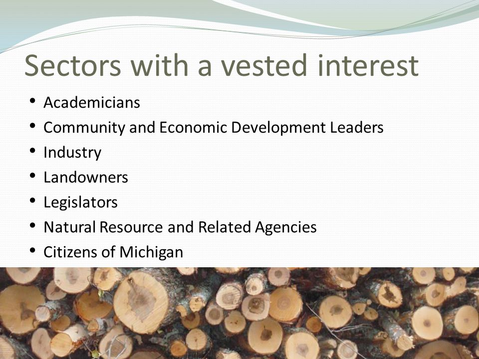 Sectors with a vested interest Academicians Community and Economic Development Leaders Industry Landowners Legislators Natural Resource and Related Agencies Citizens of Michigan 29