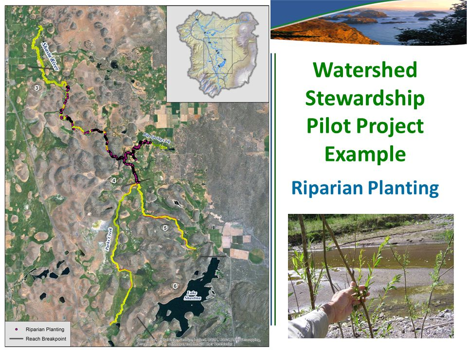 Watershed Stewardship Pilot Project Example Riparian Planting
