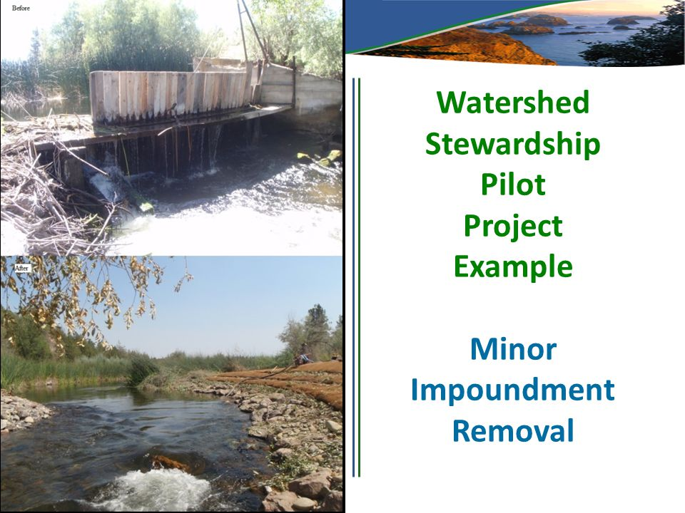 Watershed Stewardship Pilot Project Example Minor Impoundment Removal