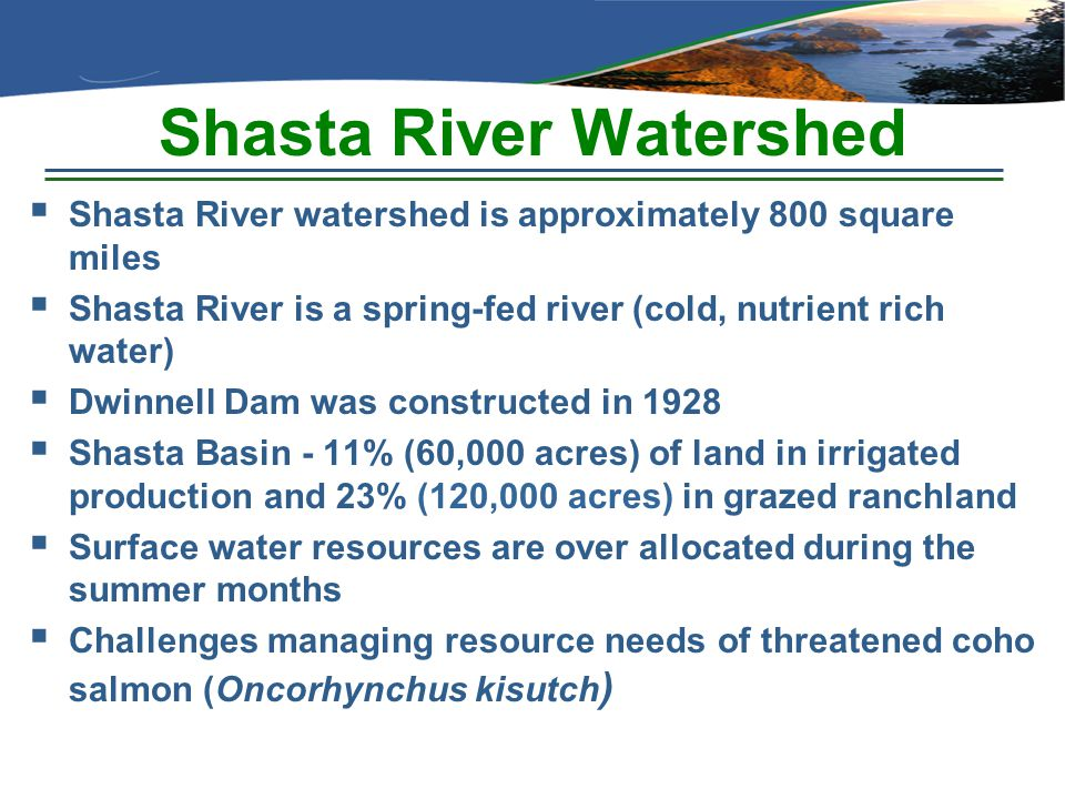 Shasta River Watershed  Shasta River watershed is approximately 800 square miles  Shasta River is a spring-fed river (cold, nutrient rich water)  D